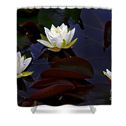 Shower Curtain featuring the photograph White Water Lilies by Nina Ficur Feenan