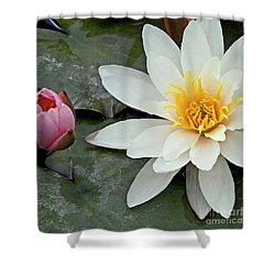 White Water Lily Nymphaea Shower Curtain by Heiko Koehrer-Wagner