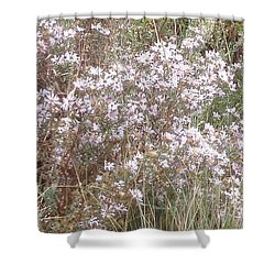 Shower Curtain featuring the photograph White Wild Flowers by Fortunate Findings Shirley Dickerson