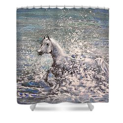 White Wild Horse Shower Curtain by Miki De Goodaboom