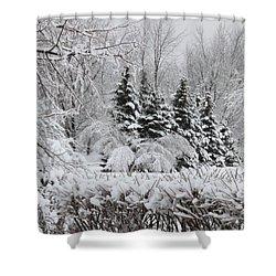 White Winter Day Shower Curtain
