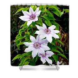 White With Purple Flowers 2 Shower Curtain