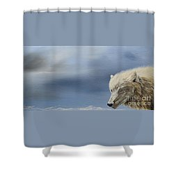 White Wolf2 Shower Curtain