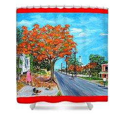 Whitehead Street Shower Curtain