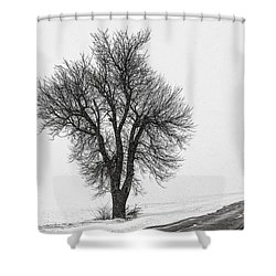 Whiteout Shower Curtain by Chris Austin