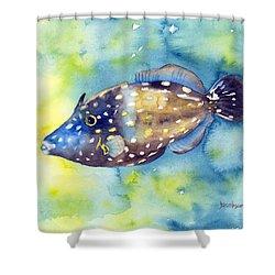 Whitespot Filefish Shower Curtain
