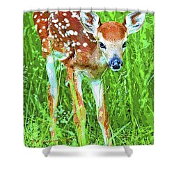 Whitetailed Deer Fawn Digital Image Shower Curtain