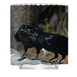 Whoa You Should See A Dentist Shower Curtain