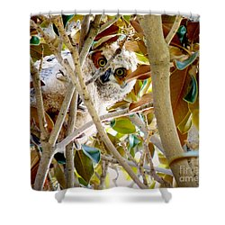 Shower Curtain featuring the photograph Whooo Are You? by Meghan at FireBonnet Art