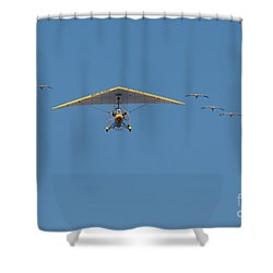 Whooping Cranes And Operation Migration Ultralight Shower Curtain by Paul Rebmann