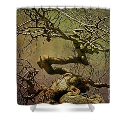 Wicked Tree Shower Curtain