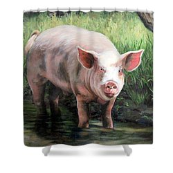Wilbur In His Woods Shower Curtain
