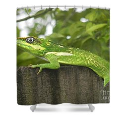 Wild About You Shower Curtain by Chrisann Ellis