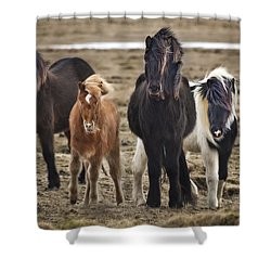 Wild And Free Shower Curtain by Evelina Kremsdorf