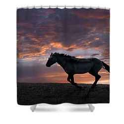 Wild And Free Shower Curtain by Leland D Howard