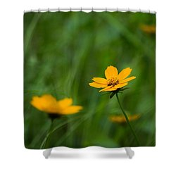 Wild And Free Shower Curtain by Shelby  Young