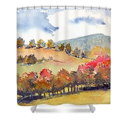 Wild And Wonderful Shower Curtain