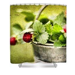 Wild Berries Shower Curtain by Darren Fisher