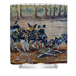 Wild Dogs After The Chase Shower Curtain by Caroline Street
