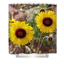 Wild Flowers Above The Rim Shower Curtain by Tom Janca