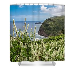 Wild Flowers At Pololu Shower Curtain by Denise Bird
