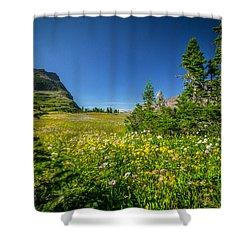 Wild Flowers Glacier National Paintedpark   Shower Curtain by Rich Franco