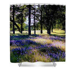 Wild Flowers In Forest Shower Curtain