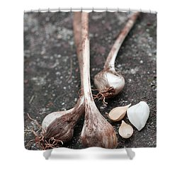Wild Garlic Shower Curtain by Melinda Fawver