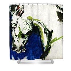 Wild Horse Shower Curtain by Angel  Tarantella