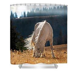 Wild Horse Cloud Shower Curtain by Leland D Howard