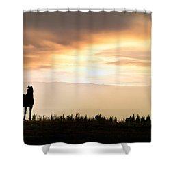 Wild Horse Sunset Shower Curtain by Leland D Howard