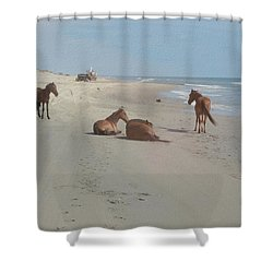 Wild Horses On The Beach Shower Curtain