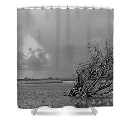 Wild Landscape Shower Curtain