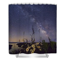 Wild Marguerites Under The Milky Way Shower Curtain by Mircea Costina Photography