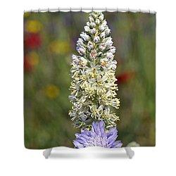 Wild Mignonette Flower Shower Curtain by George Atsametakis