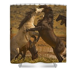 Wild Mustang Stallions - Signed Shower Curtain