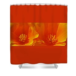 Wild Poppies Shower Curtain by Ben and Raisa Gertsberg