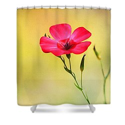 Wild Red Flower Shower Curtain by Tom Janca