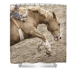 Wild Ride Shower Curtain by Caitlyn  Grasso