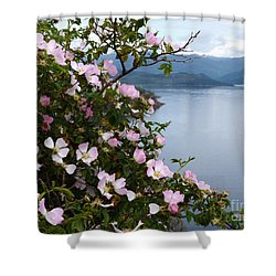 Shower Curtain featuring the photograph Wild Roses - West Highlands by Phil Banks