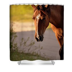 Shower Curtain featuring the photograph Wild Shadows by Amanda Vouglas
