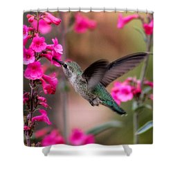 Wild Thing Shower Curtain by Tammy Espino