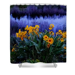 Wildflower Reflection Shower Curtain by Dan Sproul