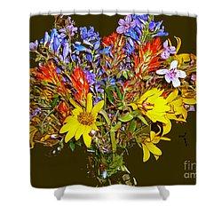 Wildflower Reminiscences Shower Curtain
