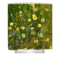 Wildflower Salad - Spring In Central California Shower Curtain
