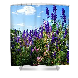 Wildflowers #9 Shower Curtain by Robert ONeil