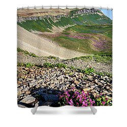 Wildflowers Above Timpanogos Basin At Sunrise Shower Curtain