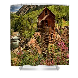 Wildflowers And Clouds Shower Curtain by Adam Jewell