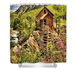 Wildflowers And History Shower Curtain by Adam Jewell