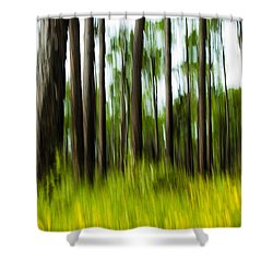 Wildflowers In The Forest Shower Curtain